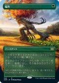 【JPN】輪作/Crop Rotation[MTG_2XM_349R]