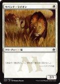 【JPN】サバンナ・ライオン/Savannah Lions[MTG_A25_033C]