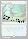【JPN】溢れかえる果樹園/Flooded Grove[MTG_A25_239R]