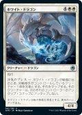 【JPN】ホワイト・ドラゴン/White Dragon[MTG_AFR_041U]