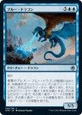 【JPN】ブルー・ドラゴン/Blue Dragon[MTG_AFR_049U]