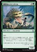 【JPN】横断地のクロコダイル/Crocodile of the Crossing[AKH_162U]