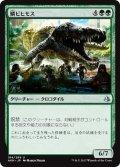 【JPN】鱗ビヒモス/Scaled Behemoth[AKH_184U]