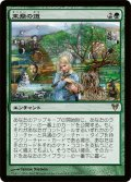 【JPN】末裔の道/Descendants' Path[MTG_AVR_173R]
