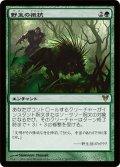 【JPN】野生の抵抗/Wild Defiance[MTG_AVR_203R]