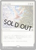 【JPN】天使の合唱/Angelic Chorus[MTG_BBD_087R]