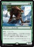 【JPN】放浪する森林/Woodland Wanderer[MTG_BFZ_198R]