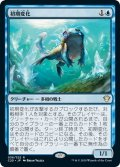 【JPN】初期変化/Nascent Metamorph[MTG_C21_036R]