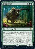 【JPN】貪欲な巨体獣/Ravenous Gigantotherium[MTG_C21_063R]