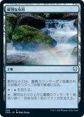【JPN】鮮烈な小川/Vivid Creek[MTG_CMR_500U]