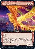 【JPN】オーロラのフェニックス/Aurora Phoenix[MTG_CMR_660R]