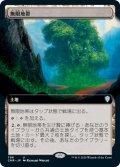【JPN】★Foil★無限地帯/Myriad Landscape[MTG_CMR_706U]