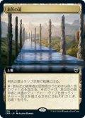 【JPN】祖先の道/Path of Ancestry[MTG_CMR_708C]