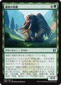 【JPN】捕食の欲動/Animus of Predation[MTG_CN2_060U]