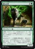 【JPN】群れの牙/Fang of the Pack[MTG_CN2_065U]