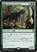 【JPN】縄張り持ちのアロサウルス/Territorial Allosaurus[MTG_DOM_184R]