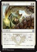【JPN】鱗の祝福/Scale Blessing[MTG_DTK_035U]