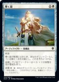 【JPN】輝く鎧/Shining Armor[MTG_ELD_029C]