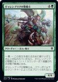 【JPN】ギャレンブリグの聖騎士/Garenbrig Paladin[MTG_ELD_157C]