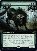 【JPN】意地悪な狼/Wicked Wolf[MTG_ELD_374R]