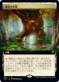 【JPN】寓話の小道/Fabled Passage[MTG_ELD_391R]