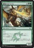 【JPN】破壊するドラゴン/Destructor DragonMTG_FRF_127U]