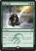 【JPN】巫師の天啓/Shamanic RevelationMTG_FRF_138R]