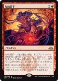 【JPN】危険因子/Risk Factor[MTG_GRN_113R]