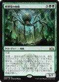 【JPN】孵卵場の蜘蛛/Hatchery Spider[MTG_GRN_132R]
