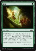 【JPN】捕食/Prey Upon[MTG_GRN_143C]