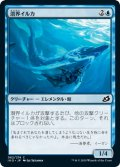 【JPN】潜界イルカ/Phase Dolphin[MTG_IKO_062C]
