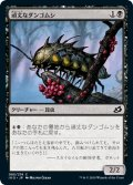 【JPN】頑丈なダンゴムシ/Durable Coilbug[MTG_IKO_085C]