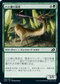 【JPN】ハエ捕り長首/Flycatcher Giraffid[MTG_IKO_153C]