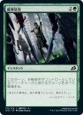 【JPN】敵軍妨害/Thwart the Enemy[MTG_IKO_173C]