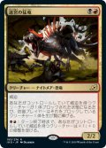 【JPN】★Foil★迷宮の猛竜/Labyrinth Raptor[MTG_IKO_193R]