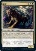 【JPN】★Foil★屍豹/Necropanther[MTG_IKO_196U]