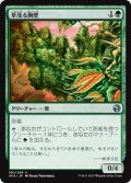 【JPN】草茂る胸壁/Overgrown Battlement[MTG_IMA_180U]