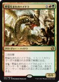 【JPN】野蛮生まれのハイドラ/Savageborn Hydra[MTG_IMA_207R]