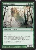 【JPN】黴墓の大怪物/Moldgraf Monstrosity[MTG_ISD_194R]