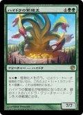 【JPN】ハイドラの繁殖主/Hydra Broodmaster[MTG_JOU_128R]