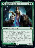 【JPN】★Foil★種族の神、コルヴォーリ/Kolvori, God of Kinship/リングハルトの紋/The Ringhart Crest[MTG_KHM_181R]