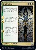【JPN】騙し屋の崩落/Fall of the Impostor[MTG_KHM_208U]