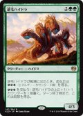 【JPN】逆毛ハイドラ/Bristling Hydra[MTG_KLD_147R]