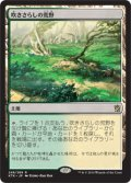 【JPN】吹きさらしの荒野/Windswept Heath[MTG_KTK_248R]