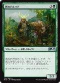 【JPN】角のドルイド/Druid of Horns[MTG_M19_176U]