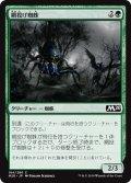 【JPN】網投げ蜘蛛/Netcaster Spider[MTG_M20_184C]
