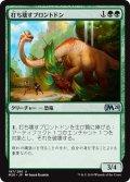 【JPN】打ち壊すブロントドン/Thrashing Brontodon[MTG_M20_197U]