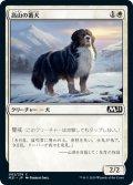 【JPN】高山の番犬/Alpine Watchdog[MTG_M21_002C]