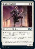 【JPN】鍛え抜かれた古参兵/Tempered Veteran[MTG_M21_041U]