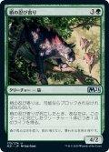 【JPN】梢の忍び寄り/Canopy Stalker[MTG_M21_175U]